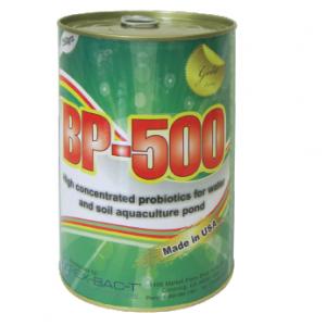 BP-500