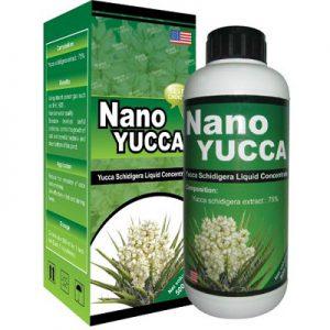 NANO – YUCCA